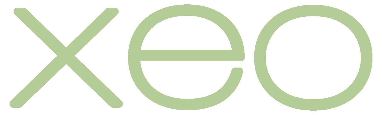 ami logos5